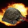 Xplosive_Turtle